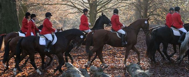 Fox hunting law needs reform