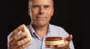 World's First Lab-Grown Burger: The Ethical Implications