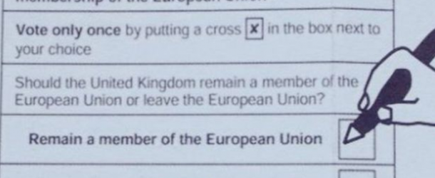Controversy as Electoral Commission Guide Tells Voters to Vote Remain